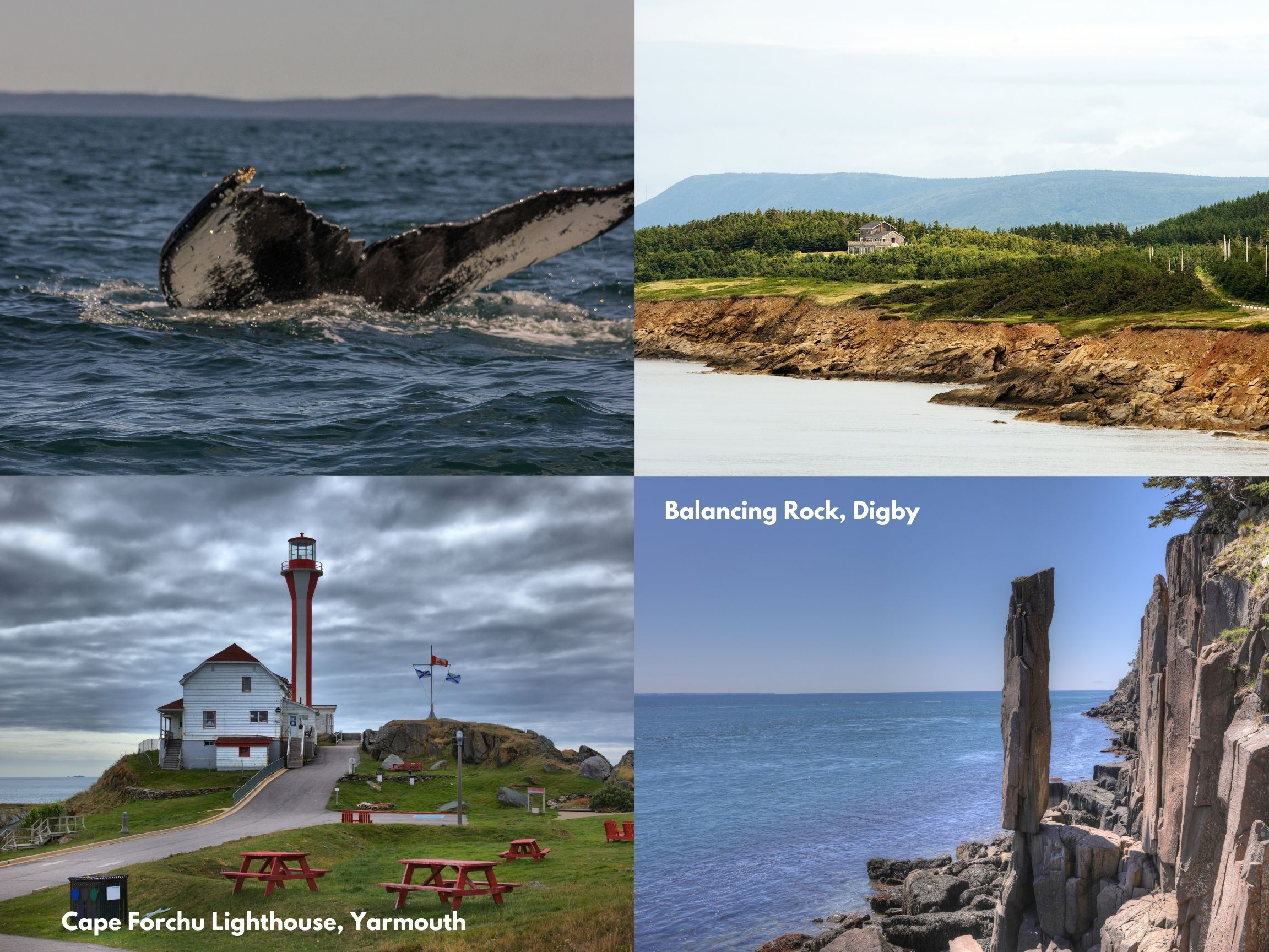 Fun Things To Do In Yarmouth, Clare and, Digby